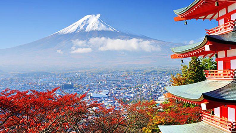 پروندهی فروشهای ویژه؛ پاداش فصلی در ژاپن