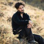 جشنواره فیلم فجر سی و هشتم در یک نگاه